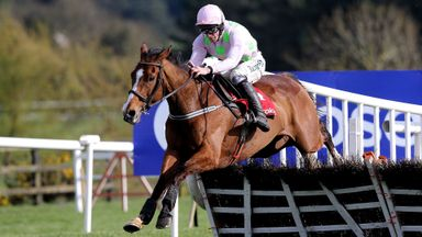 Faugheen ridden by jockey David Mullins clear the last on the way to winning the Ladbrokes Champion Stayers Hurdle