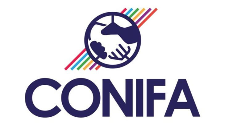 CONIFA, which was founded in June 2013, is staging its third World Football Cup at non-league grounds in and around London