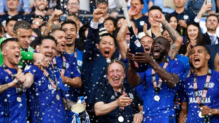 Neil Warnock and Cardiff's players celebrate the team's promotion to the Premier League
