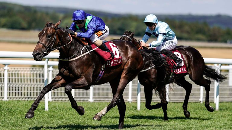 National stakes under consideration for dark vision racing news dark vision heading to the national stakes fandeluxe Choice Image