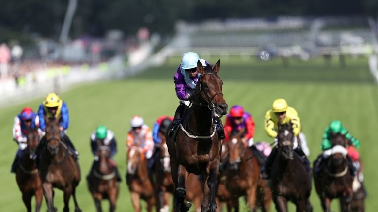 Dash Of Spice: On track for John Smith's Cup