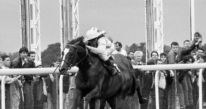 Mtoto: Winning the King George at Ascot