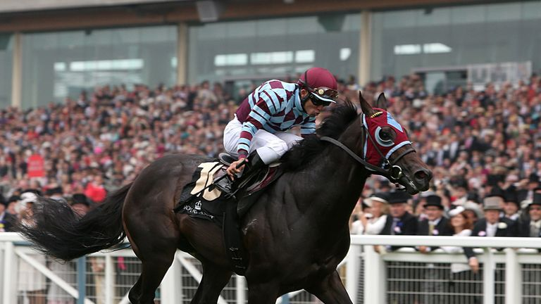 No Nay Never: St James's Palace Stakes his big target