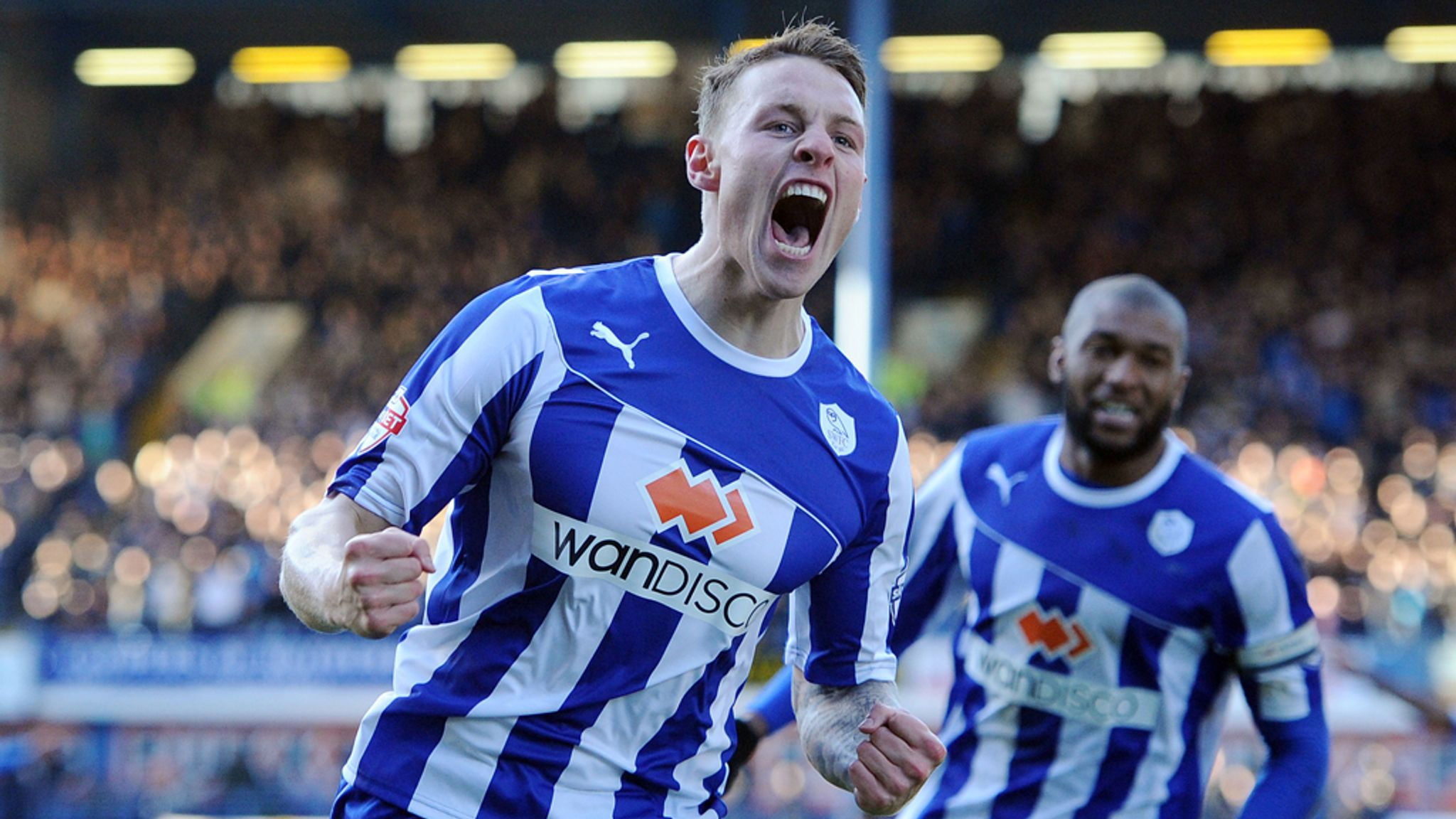 Image result for connor wickham sheffield wednesday