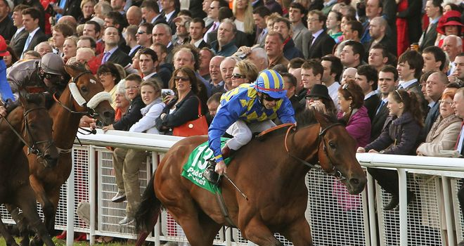 An Saighdiur: Is a better horse with ease underfoot