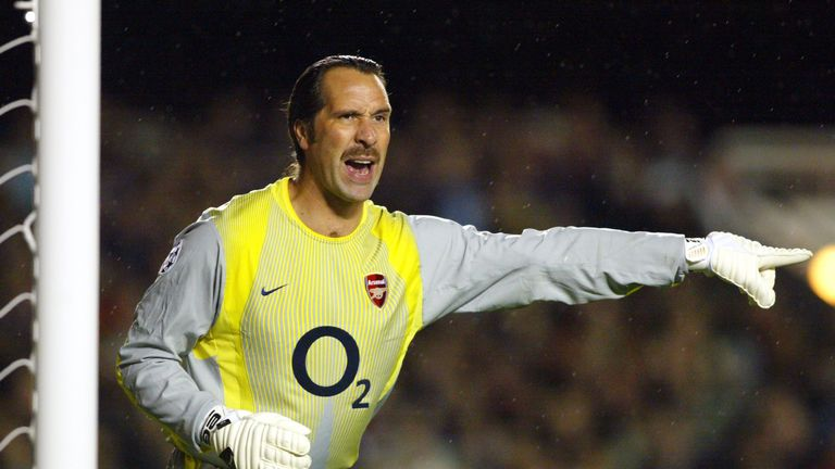 David Seaman in his days as an Arsenal player