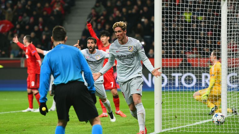 Fernando Torres was stunned his goal wasn't given