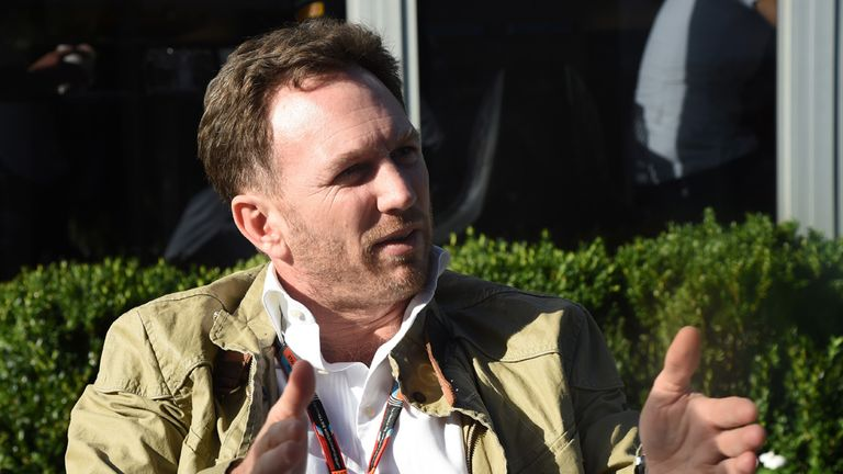 Christian Horner: Has suggested wind tunnel ban