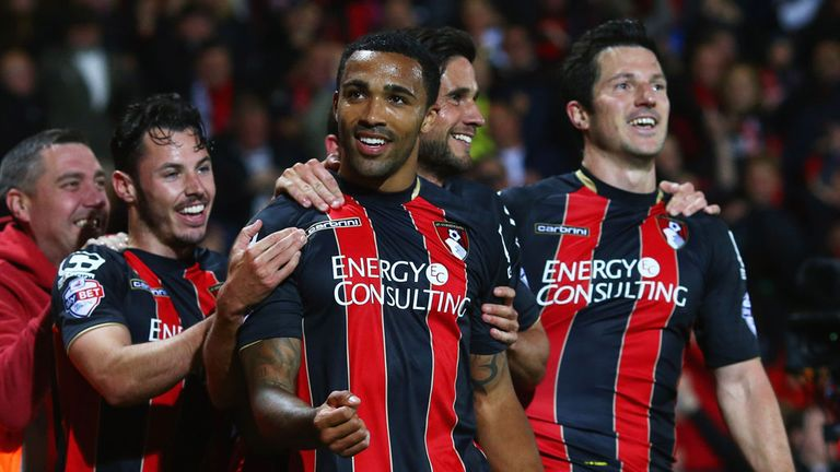 Callum Wilson: Bournemouth celebrate
