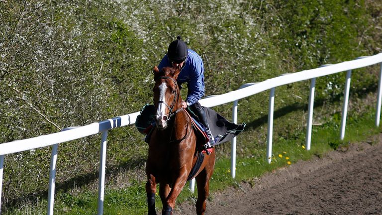 Shifting Power could take his chance in the Lockinge