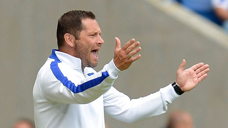 Pal Dardai: Divides his time between coaching Hertha Berlin and Hungary