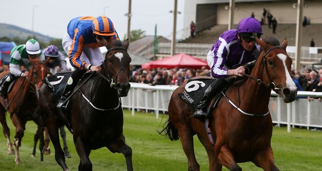 Minding lowered the colours of Ballydoyle
