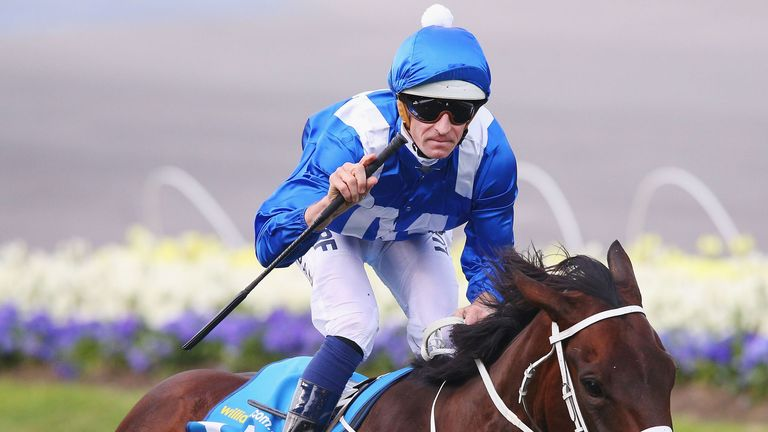 Wonder Mare Winx To Race On In 2019