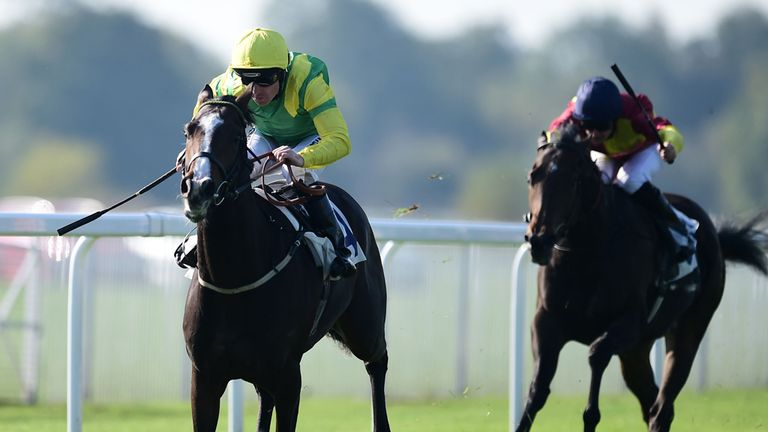 Windsor: Green light for this afternoon's card