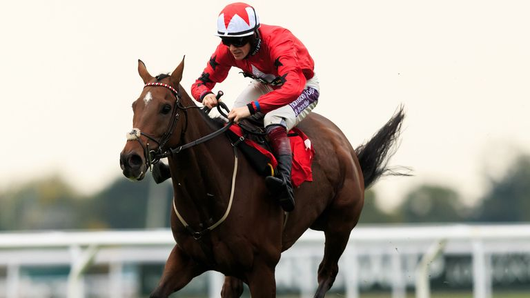 The New One wins the williamhill.com Hurdle at Kempton