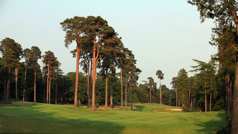 The signature seventh hole, carved through the tall pines