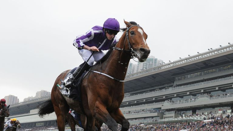 Highland Reel Won The Hong Kong Vase From Flintshire Racing News