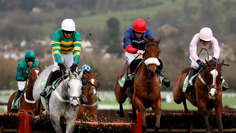 Hargam just holds the narrow lead as he, Old Guard and Sempre Medici take the final flight in the International Hurdle at Cheltenham.