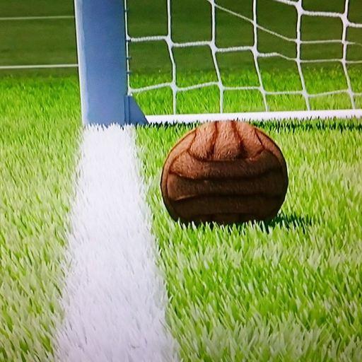 Hurst shot 'did cross the line'