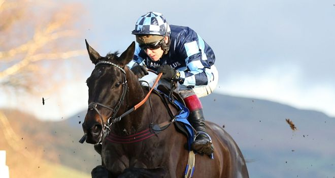 Garde La Victoire ridden by Richard Johnson jumps the last to win at Ludlow