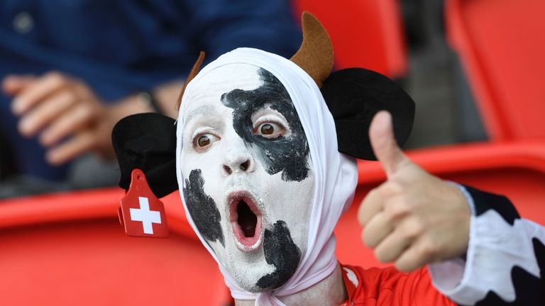A Switzerland supporter at the Parc des Princes