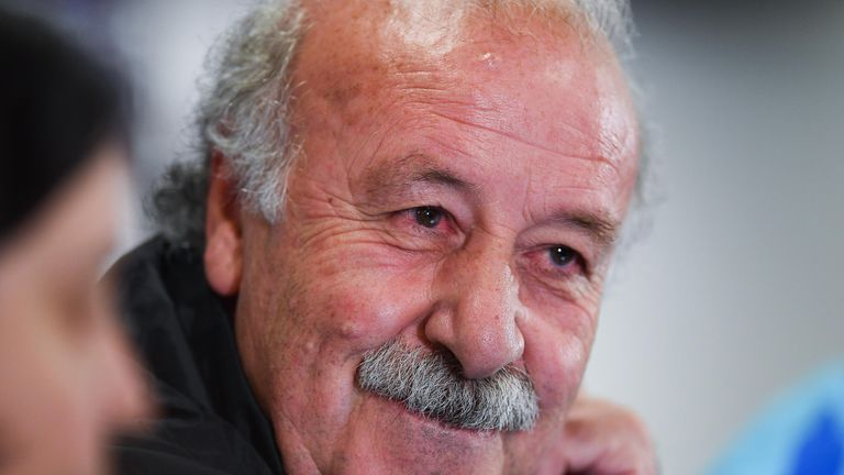 Vicente Del Bosque is pleased with how Euro 2016 preparations are going