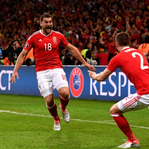 Wales 8/1 to win Euro 2016