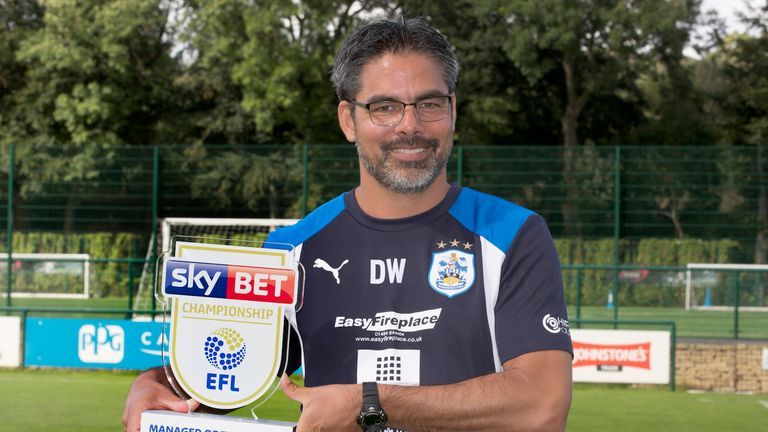 Huddersfield Town manager David Wagner has been named as the Sky Bet Championship Manager of the Month