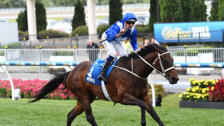 chipping norton stakes betting trends