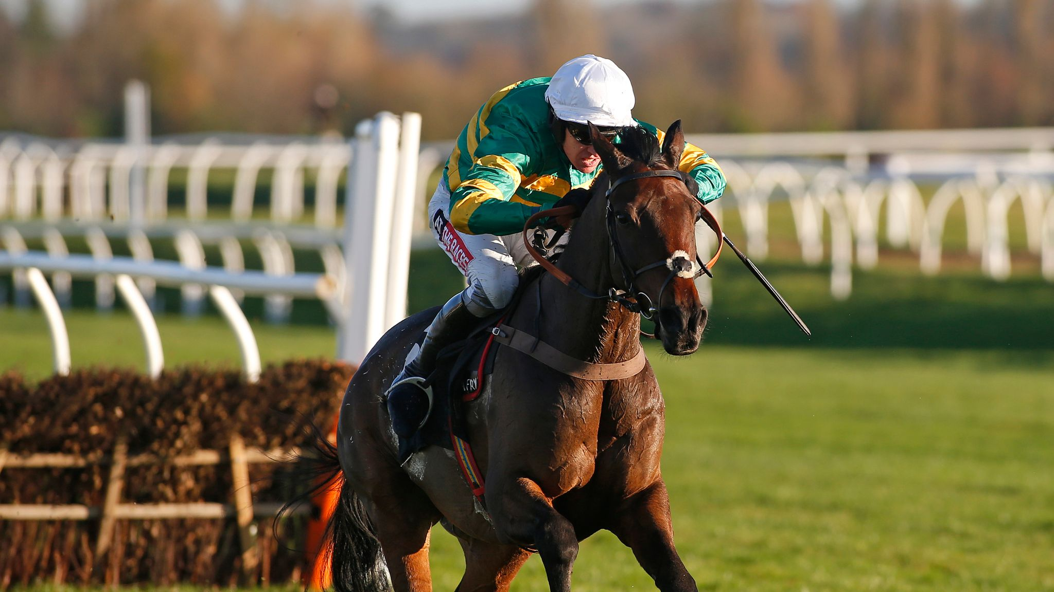Unowhatimeanharry may head to Haydock
