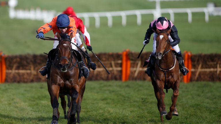 sky sports racing cheltenham betting