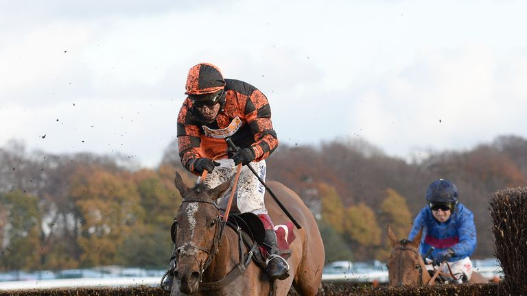 Mysteree: Could head back to Newcastle for Eider Chase