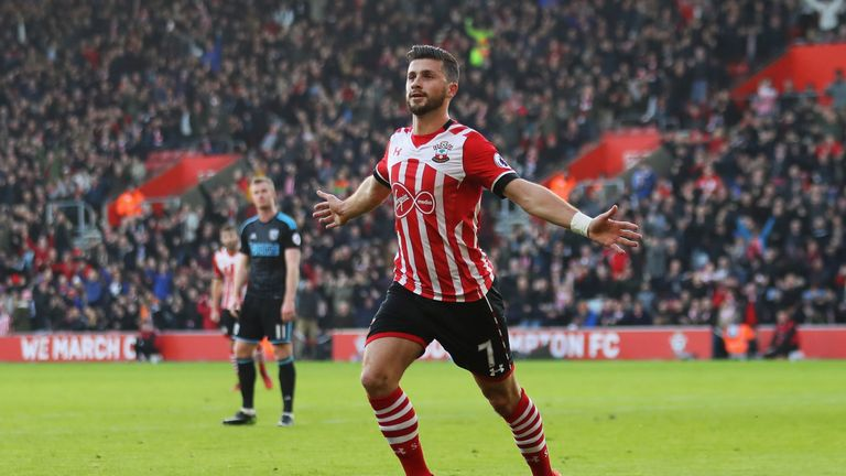 Shane Long celebrates after scoring the opening goal of the game