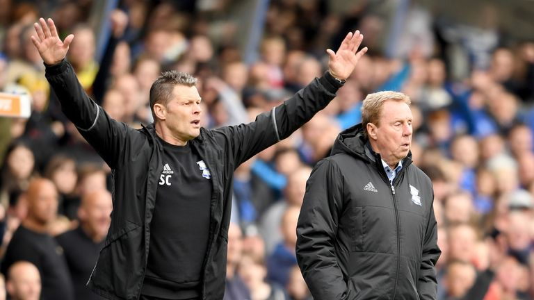 Steve Cotterill (left) is in negotiations to become Redknapp's full-time assistant at Birmingham