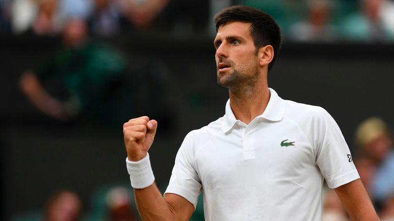 Novak Djokovic has employed the recently retired Radek Stepanek as a coach