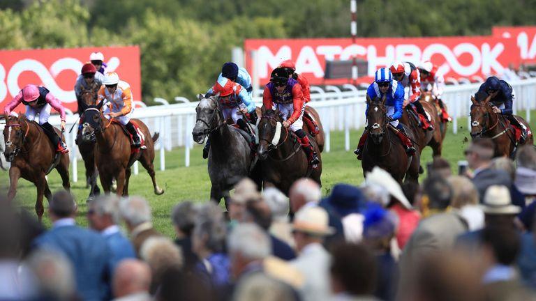 Dark Red (centre, grey horse) alongside Fabricate