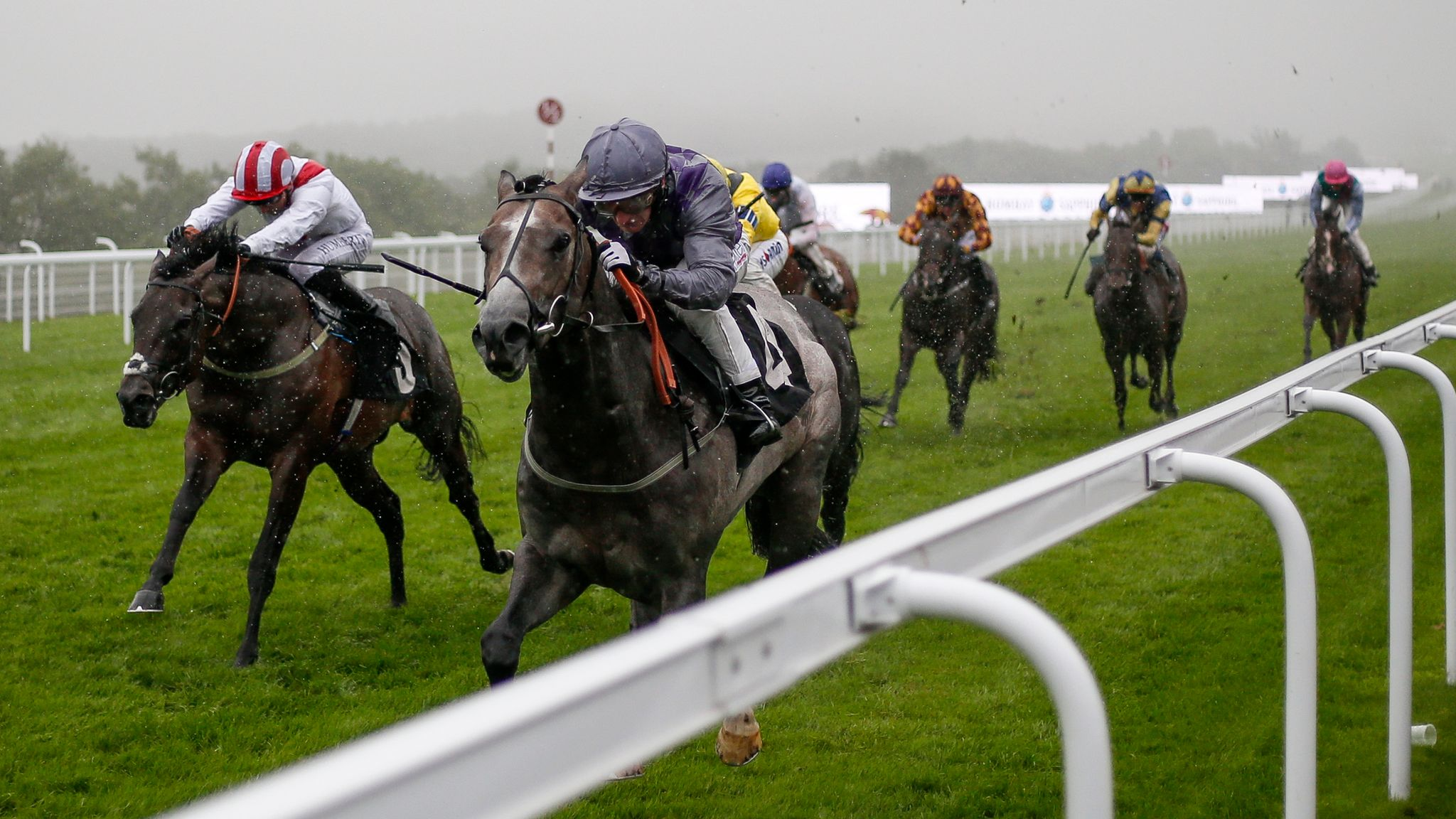 Duke of york stakes betting betting shop roulette strategy