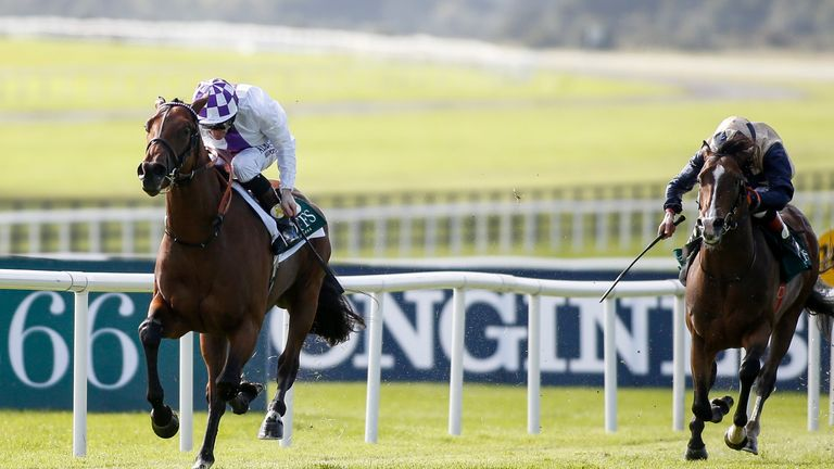 Verbal Dexterity is out of the Dewhurst