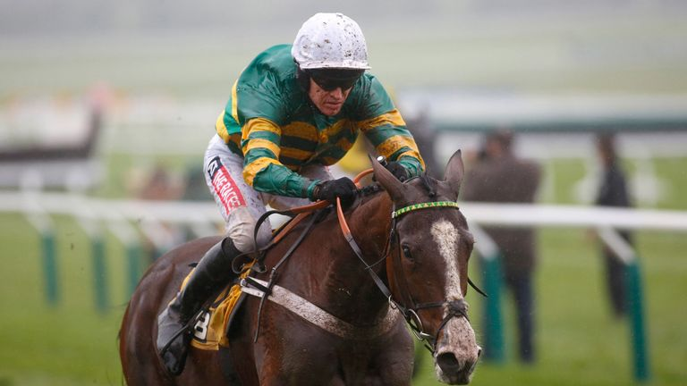 Apple's Shakira: Faces only eight rivals in the JCB Triumph Hurdle