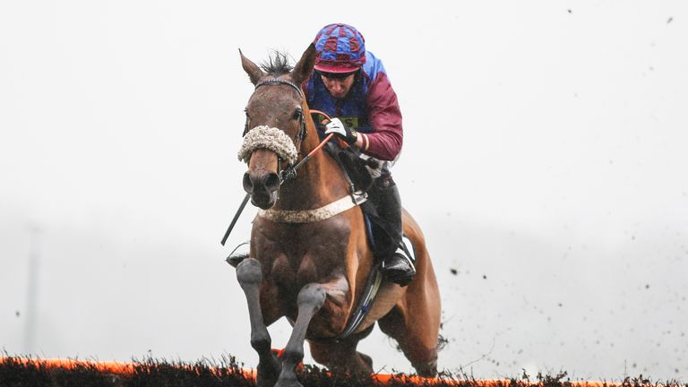 ASCOT, ENGLAND - JANUARY 20:  Noel Fehily riding La Bague Au Roi clear the last to win The OLBG.com Maresâ Hurdle Race at Ascot Racecourse on January 20,