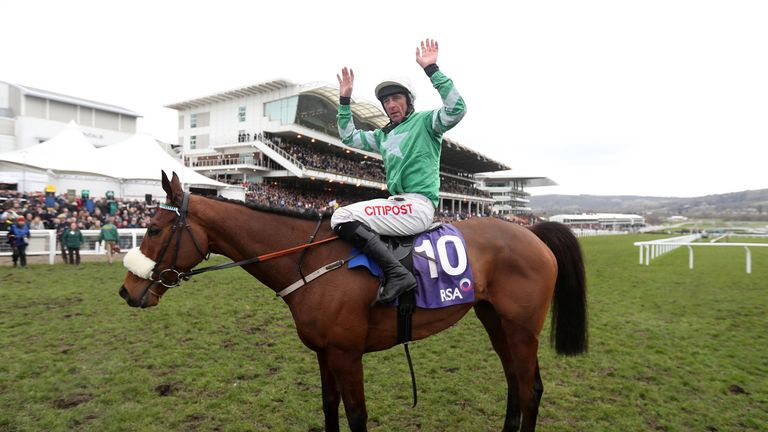Presenting Percy - favourite for the Gold Cup
