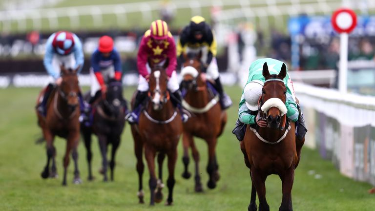 Presenting Percy - entered in Leopardstown feature