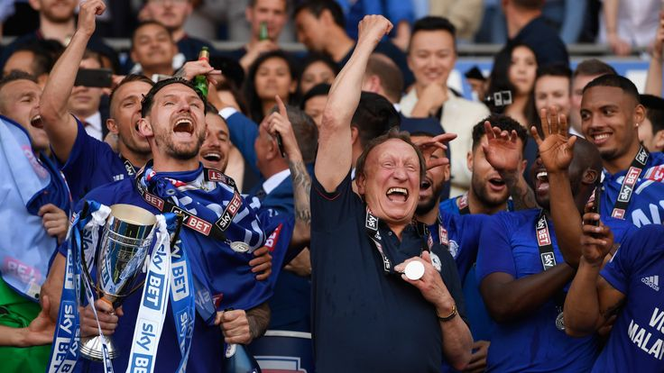 during the Sky Bet Championship match between Cardiff City and Reading at Cardiff City Stadium on May 6, 2018 in Cardiff, Wales.