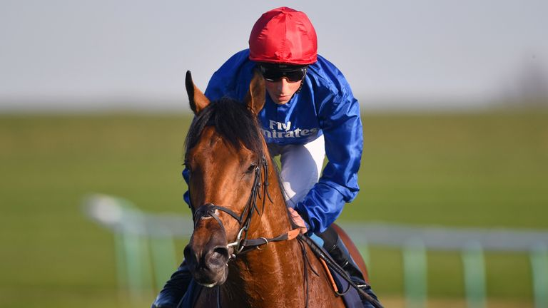 Old Persian: In action at Newmarket on Saturday