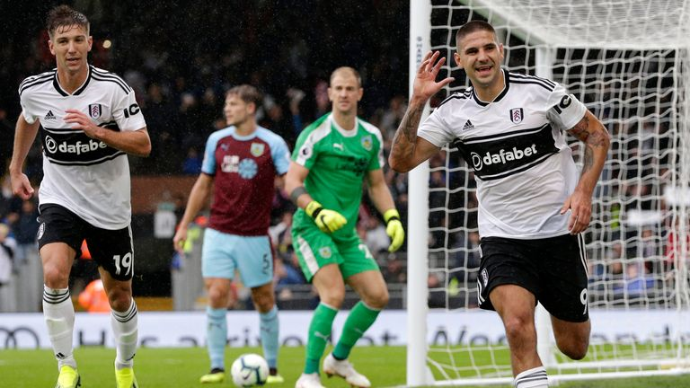 Chris Hughton is wary of in-form Aleksandar Mitrovic