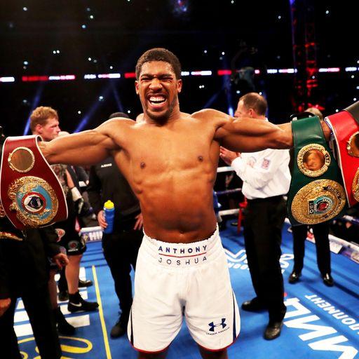 WBC backs AJ over 'ultimate fight'