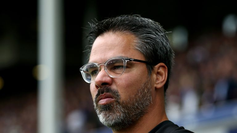 David Wagner was impressed by how his side acquitted themselves at Goodison