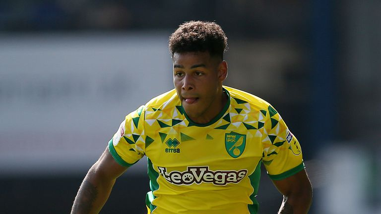 Norwich City's Onel Hernandez could return to face Stoke