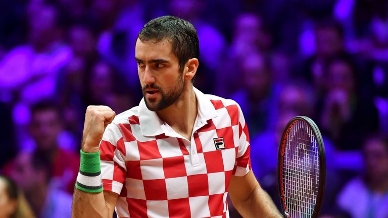 World number seven Cilic produced a dominant display to lead Croatia to a second Davis Cup title