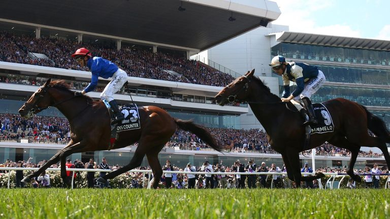 Cross Counter won the Melbourne Cup for Godolphin